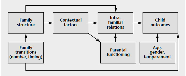 Figure 1. Mediation and moderation model of the relationship between family structure and child outcomes, described in text