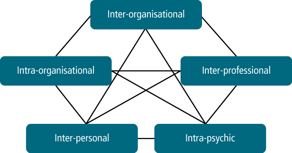 Figure 5: The five sources of conflict between service organisations - as described in text