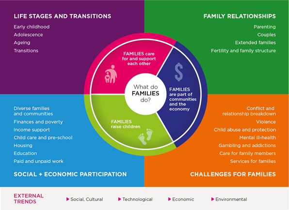 families framework infographic