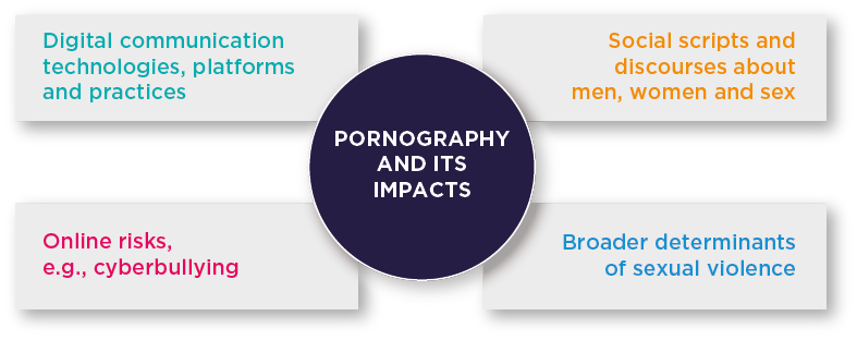 Pornography and its impacts: Digital communication technologies, platforms and practices. Social scripts and discourses about men, women and sex. Online risks, e.g., cyberbullying. Broader determinants of sexual violence.