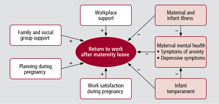 a model of factors proposed to predict womens return to work after - Back To Work Returning To Work After Maternity Leave