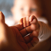 Close up of a hand holding newborn baby's hand