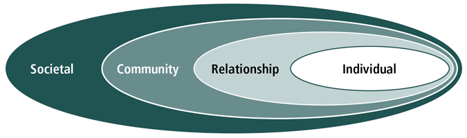 Figure 1: The social-ecological model as described in text