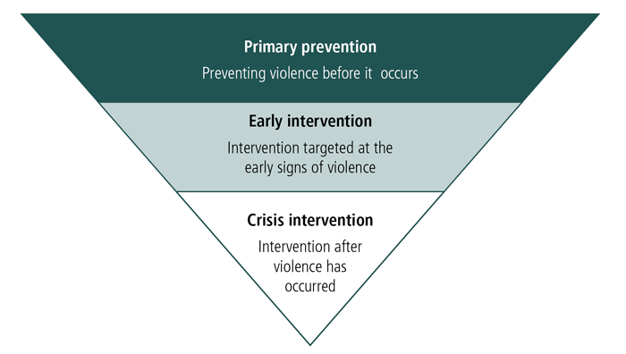Figure 2: Indigenous Family Violence Framework - as described in text