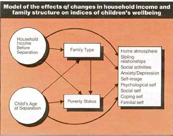 the influence of divorce on children This paper is a review of children's postdivorce adjustment in relation to individual, familial, social and cultural contingencies a systems perspective is adopted with children's adjustment being viewed as a dynamic ongoing process and causation perceived as circular.